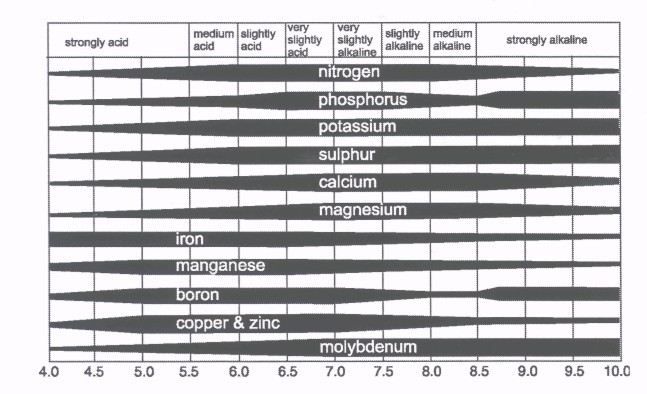 Chart of the Effect of Soil pH